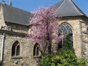 église Saint-Sernin